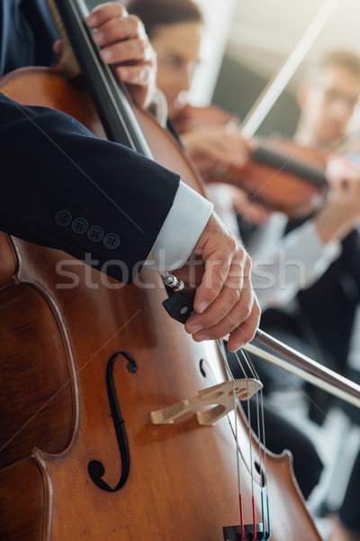 Stock photo: Symphony orchestra performance, string section