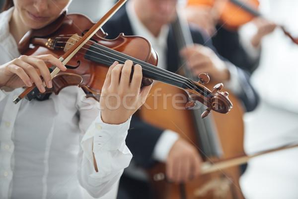 Hegedűművész előad zenekar női szelektív fókusz zene Stock fotó © stokkete