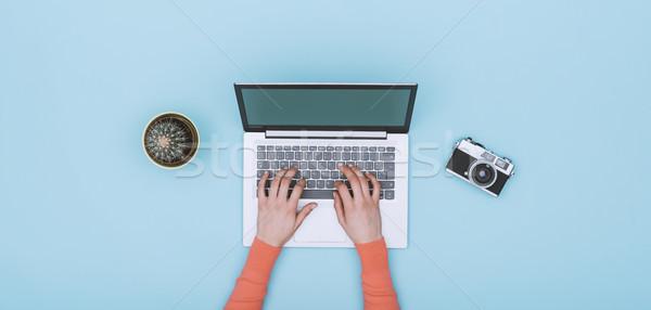 Minimalist açık mavi Çalışma alanı dizüstü bilgisayar dijital fotoğraf makinesi kaktüs Stok fotoğraf © stokkete