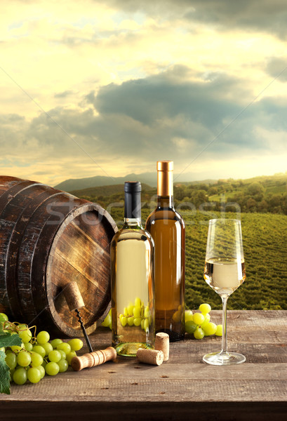 Wine tasting with vineyard background Stock photo © stokkete