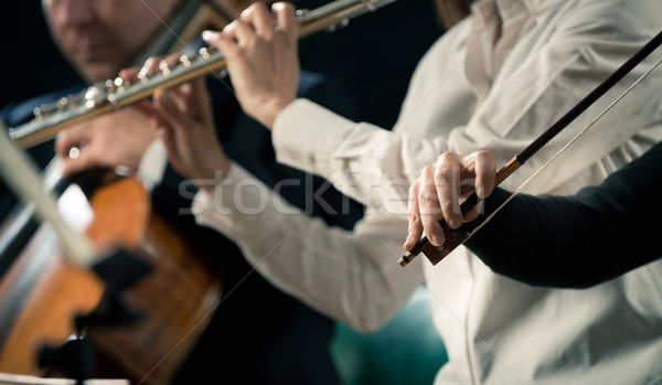 Violinists performing, hands close-up Stock photo © stokkete
