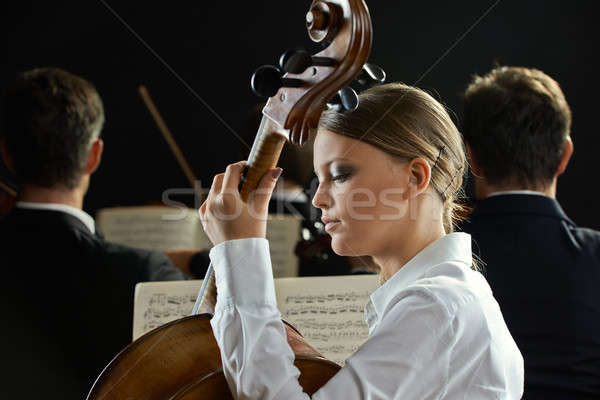 A cellist in concert  Stock photo © stokkete