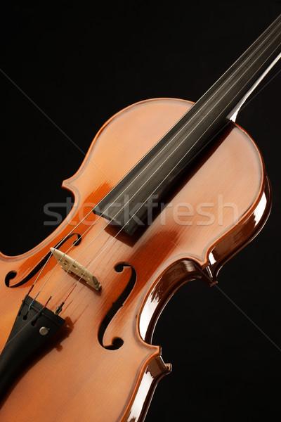 скрипки элегантный выстрел музыку красный элегантность Сток-фото © stokkete