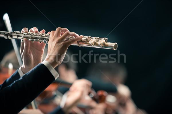 Sinfonia orquestra atuação feminino Foto stock © stokkete
