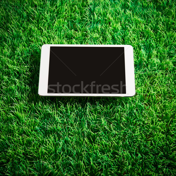 Tablet on artificial grass Stock photo © stokkete