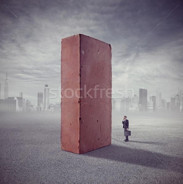 Investing in bricks Stock photo © stokkete