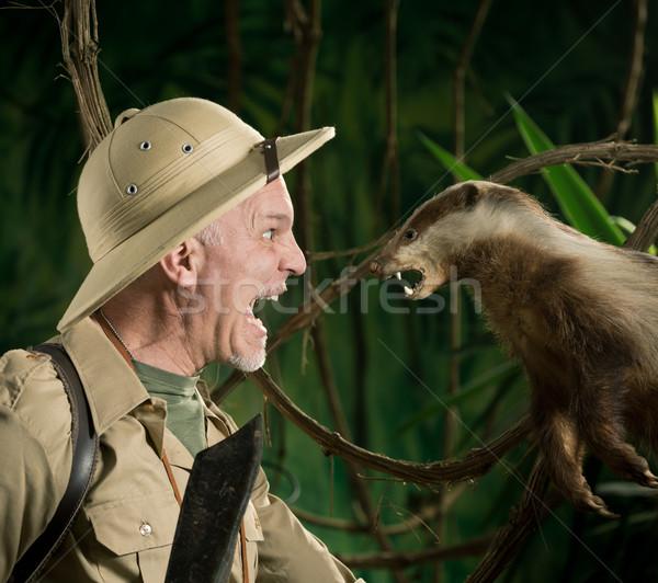 Veszélyes megbeszélés erdő megrémült felfedező bősz Stock fotó © stokkete