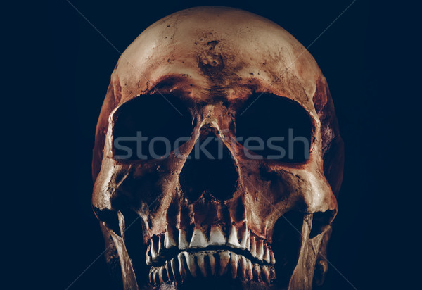 Creepy old skull on black background Stock photo © stokkete