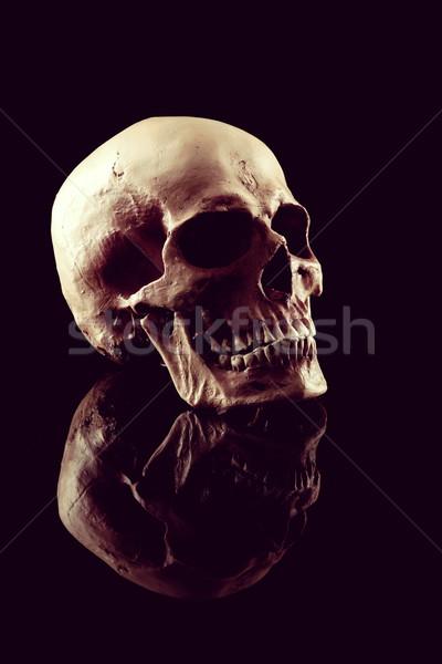 人間 頭蓋骨 自然 黒 死 ヴィンテージ ストックフォト © stokkete