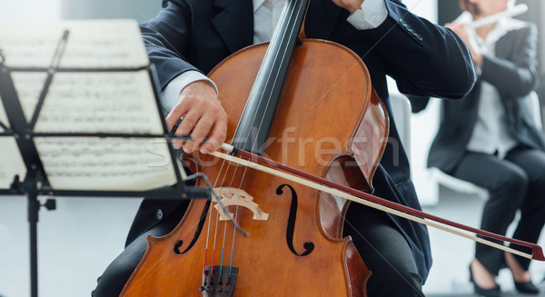 Classical orchestra performance, string section Stock photo © stokkete