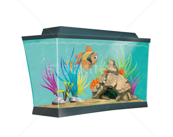 Colorful aquarium Stock photo © stokkete