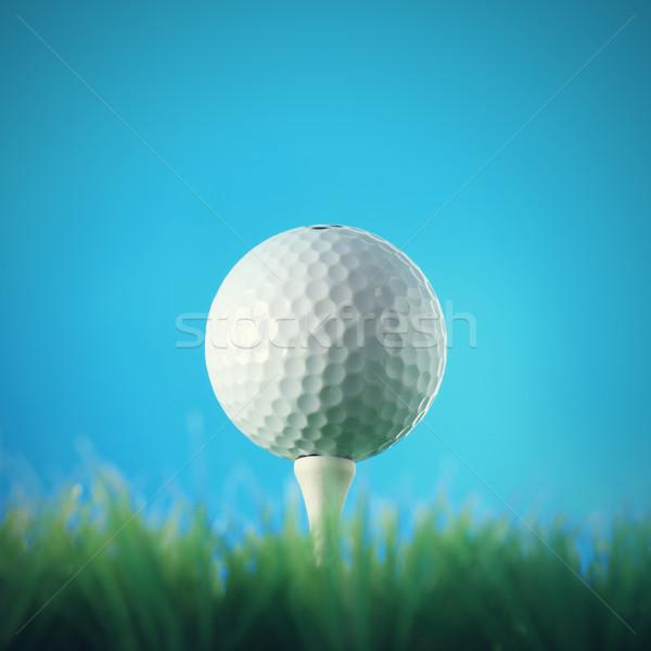 мяч для гольфа трава Blue Sky зеленый мяча Сток-фото © stokkete