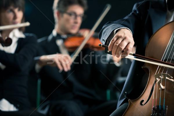 Szimfónia zenekar cselló játékos közelkép előad Stock fotó © stokkete