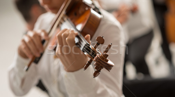 Talented violinist playing with orchestra Stock photo © stokkete