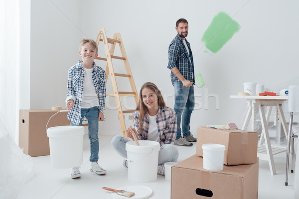 Home improvement and renewal Stock photo © stokkete