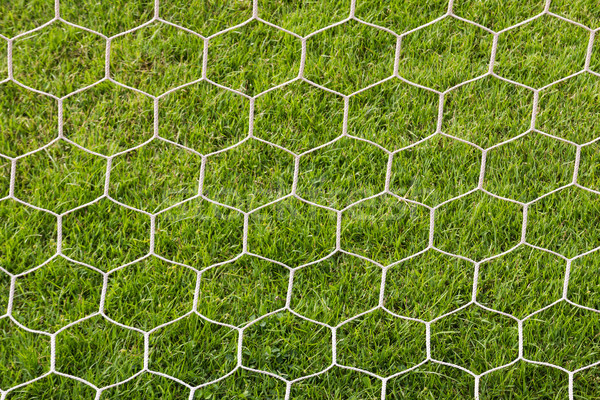 Maakt een reservekopie kant doel voetbal voetbalveld gras Stockfoto © stoonn