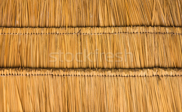 Thatched roof  straw Stock photo © stoonn