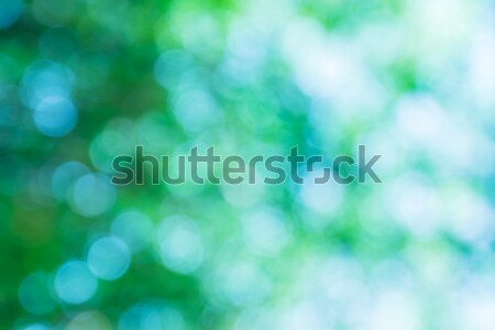 Blurred green lights circular bokeh abstract for Christmas back Stock photo © stoonn