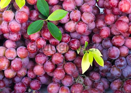 Fresh grape fruit in the market Stock photo © stoonn
