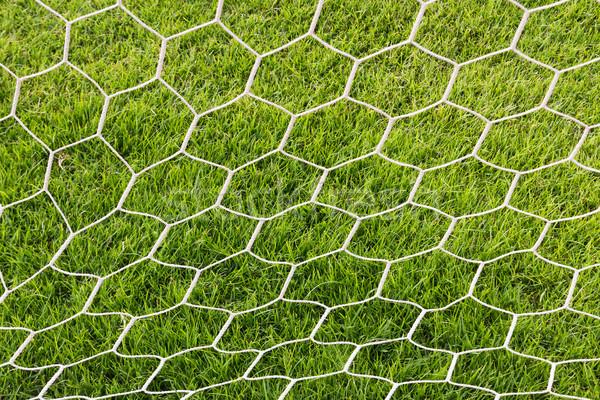 Back side the Goal football Stock photo © stoonn