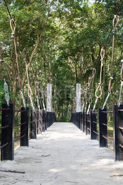 Rope walkway through the treetops  Stock photo © stoonn