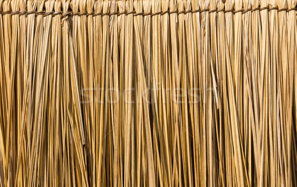 Straw background Stock photo © stoonn