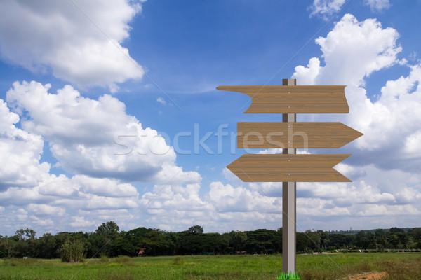 Foto stock: Grama · verde · campo · blue · sky · negócio · quadro