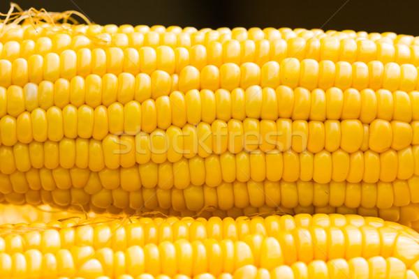 Fresco milho fazenda cozinhar cozinhar Foto stock © stoonn