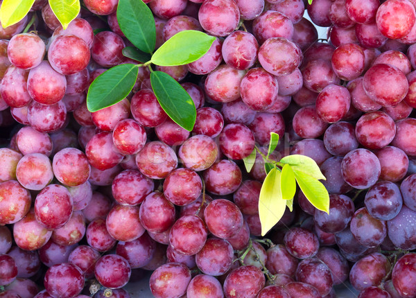 Taze kırmızı üzüm meyve pazar mavi Stok fotoğraf © stoonn