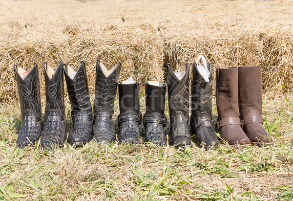 Crocodile cowboy leather boots  Stock photo © stoonn