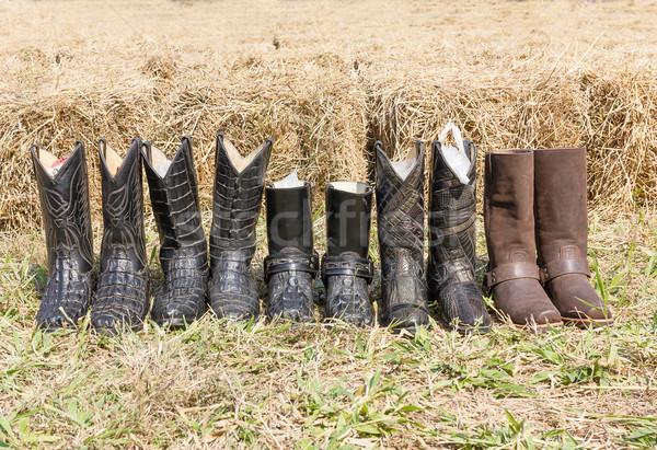 Krokodil cowboy leder laarzen amerikaanse west Stockfoto © stoonn