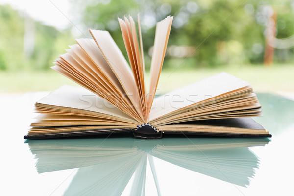 открытой книгой свет природы дизайна фон пространстве Сток-фото © stoonn