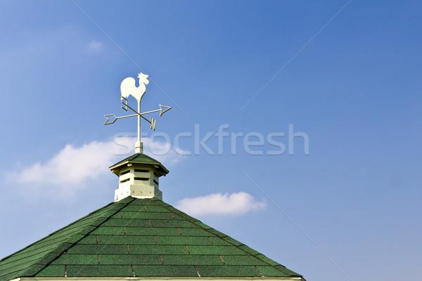 петух флюгер крыши Blue Sky фон знак Сток-фото © stoonn