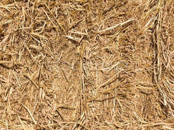 Veld hooi stro platteland oogst tijd Stockfoto © stoonn
