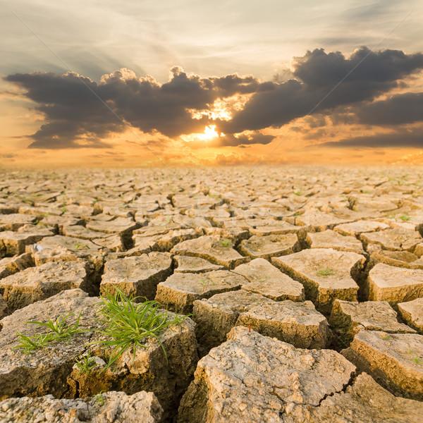 Droogte grond avond zonsondergang opwarming van de aarde water Stockfoto © stoonn