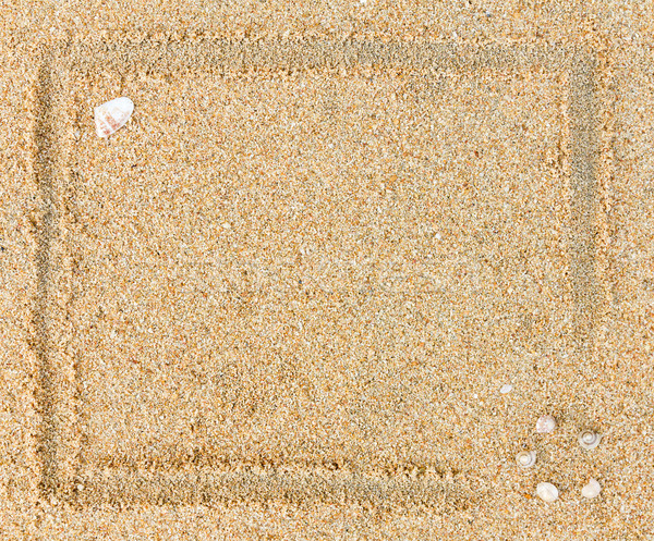 Plaża piaszczysta morza muszle ramki piasku tle Zdjęcia stock © stoonn