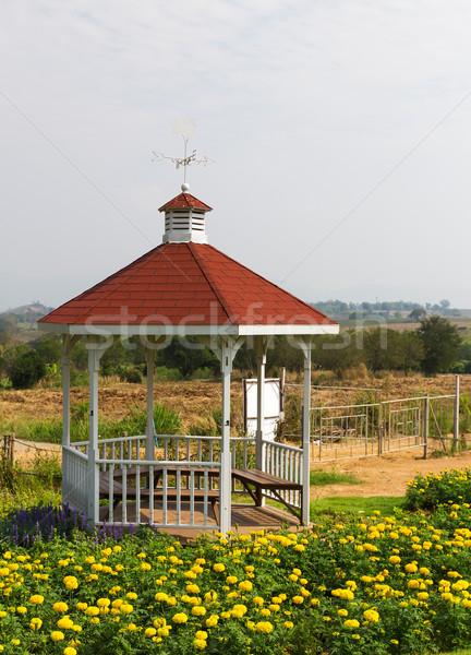 Parque verano jardín signo brújula Foto stock © stoonn