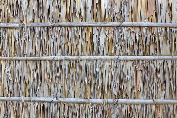 Palm leaf wall texture  Stock photo © stoonn