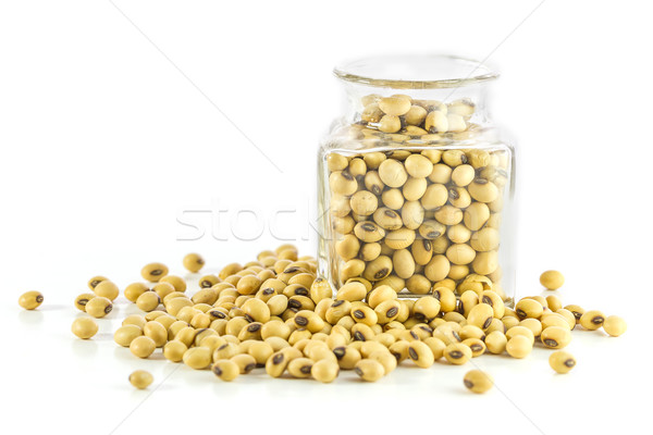 Bottle full of Soybeans Stock photo © stoonn