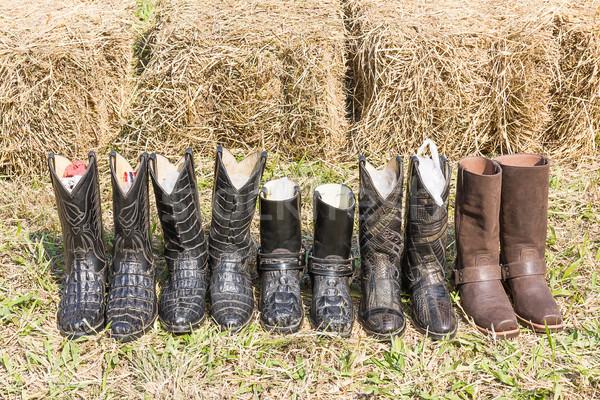 ワニ カウボーイ 革 ブーツ アメリカン 西 ストックフォト © stoonn