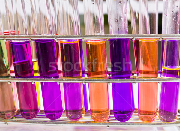 Test tubes sit in rack  Stock photo © stoonn