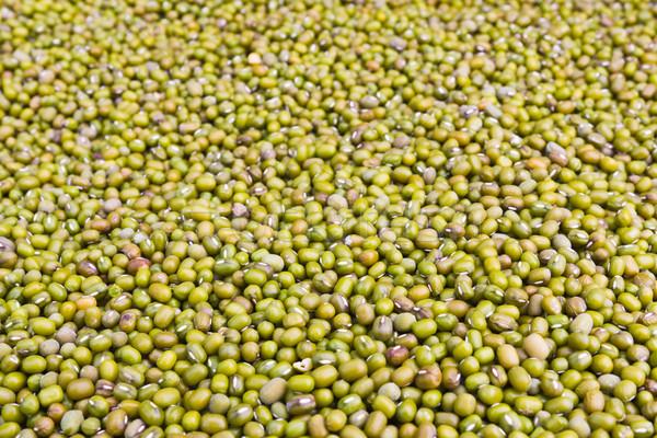 Green mung beans Stock photo © stoonn