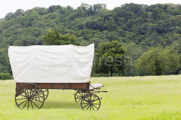 Covered wagon in fields Stock photo © stoonn