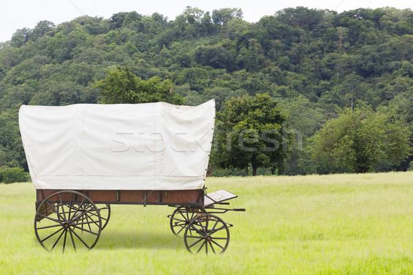 Fedett vagon mezők fehér felső égbolt Stock fotó © stoonn