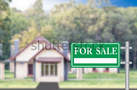 Home For Sale with green for sale sign Stock photo © stoonn