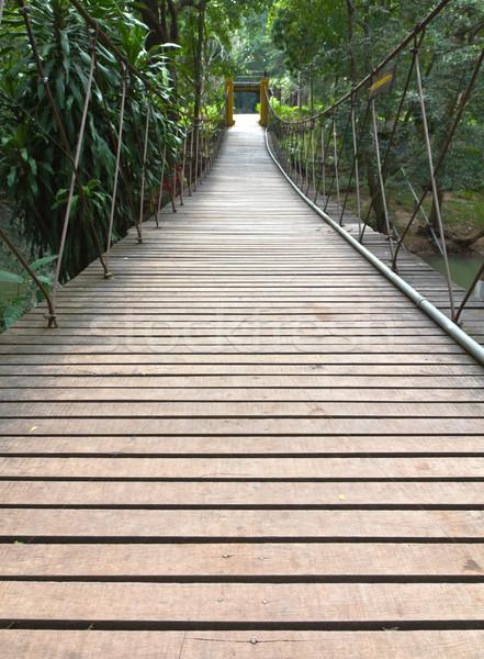Stock photo: Rope walkway through the treetops