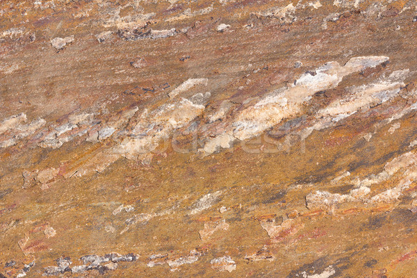 Texture of yellow stone Stock photo © stoonn