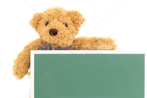 Teddy bear with empty green board Stock photo © stoonn
