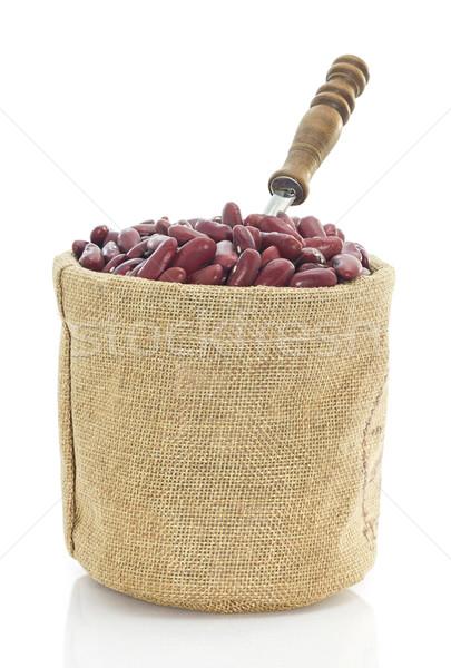 Nier bonen witte gedroogd voedsel Stockfoto © stoonn