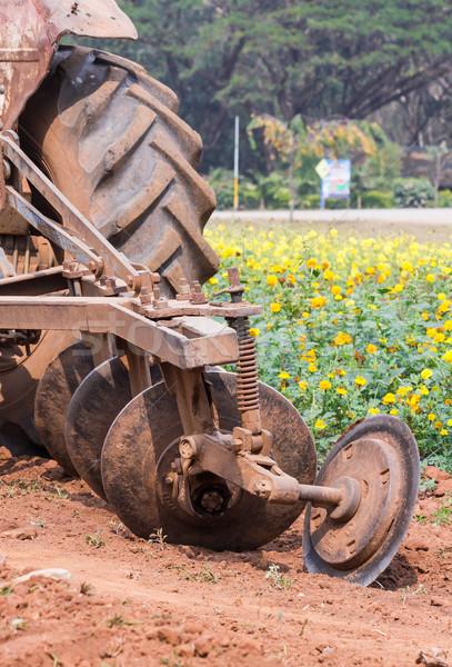 Tracteur jardin de fleurs herbe couvert domaine fleur Photo stock © stoonn